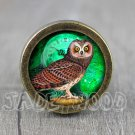 Owl Glass Cabochon Bronze cabinet Dresser Knobs pull / Dresser Pull