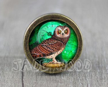 Owl Glass Cabochon Bronze cabinet Dresser Knobs pull / Dresser Pull
