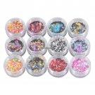 12 Boxes Luminous Nail Glitter Sequins Bling Flakes Shinning Nail Tips Design Mirror Glitter Powder