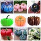 Rainbow Halloween Pumpkin Home Garden Bonsai Vegetables Nutrient Rich Food Edible, Delicious Rounde