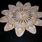 Antique pineapple motif crocheted doily varigated thread hc1855