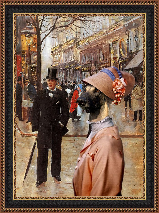 Sloughi Fine Art Canvas Print -  Can I aprproach her