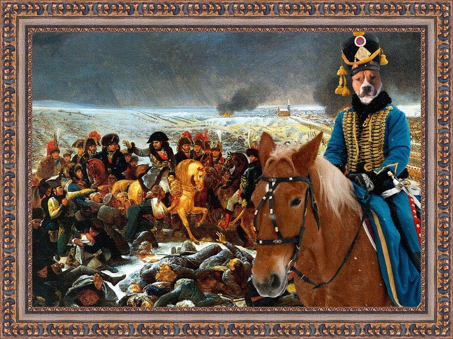 American Staffordshire Terrier Fine Art Canvas Print -  Napoleon's winter battle