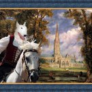 Bull Terrier Fine Art Canvas Print - Salisbury Cathedral