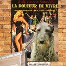 Scottish Deerhound Poster Art Canvas Print -  La Dolce Vita Movie Poster