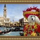 Standard Poodle Fine Art Canvas Print - The Bucintoro