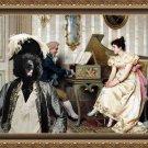 Standard Poodle Fine Art Canvas Print - The serenade