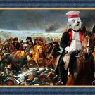 Tibetan Terrier Fine Art Canvas Print - Napoleon said forward into battle