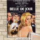 Silky Terrier Poster Canvas Print  -  Belle de Jour  Movie Poster