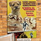 Border Terrier Poster Canvas Print  -  North by Northwest Movie Poster