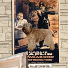 Soft Coated Wheaten Terrier Poster Canvas Print  -  THE VAGABOND Movie Poster