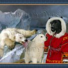 Greenland Dog Fine Art Canvas Print - Hunt of polar bear
