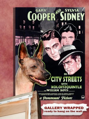 Mexican Hairless Dog Canvas Print - City Streets Movie Poster