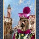 Yorkshire Terrier Fine Art Canvas Print - Rio St Barnaba Venice