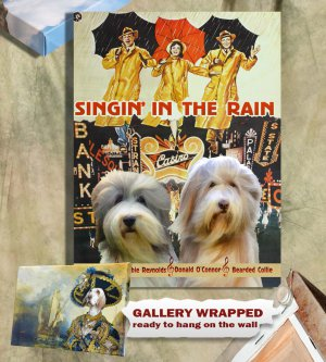 Bearded Collie Poster Canvas Print -  Singin' in the Rain