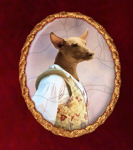 Mexican Hairless Dog Jewelry Brooch Handcrafted Ceramic by Nobility Dogs