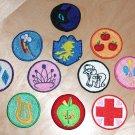 "2"" Merit Badge Set"