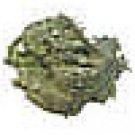 Lime - 1 Ounce