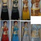 Dress fresh arrival Belly Dance costume detailing all professionally handmade