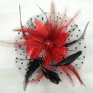 Bridal Feather Black silk flower Peacock pin clip BA141