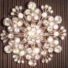 Bridal Crystal Corsage Czech Rhinestone Brooch pin PI23