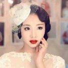Bridal Ivories rhinestone Blusher Veil hair Flower net Birdcage Fascinator BA208