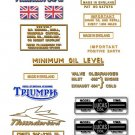 1954-62: Thunderbird - RESTORERS DECALS - Triumph 6T Stickers ( Adhesive Transfers )