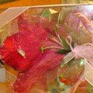Flower Fairy 's