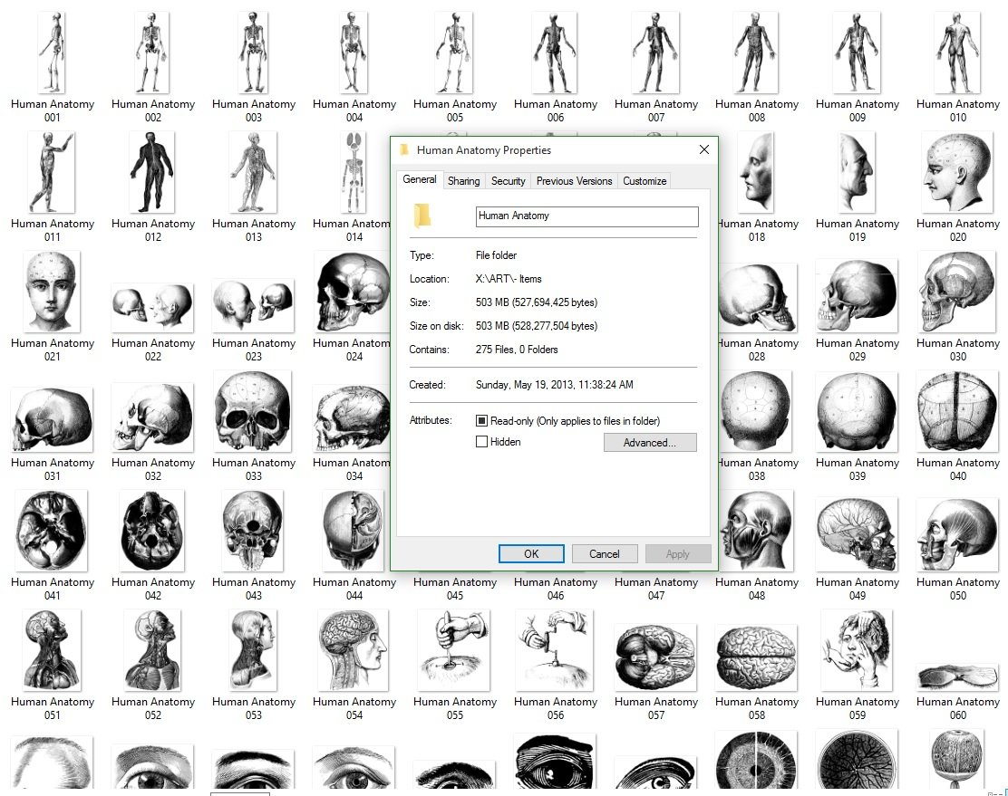 human anatomy research paper Human anatomy or anthropotomy is a special field within anatomy it studies structures and systems of the human body, leaving the study of tissues to.