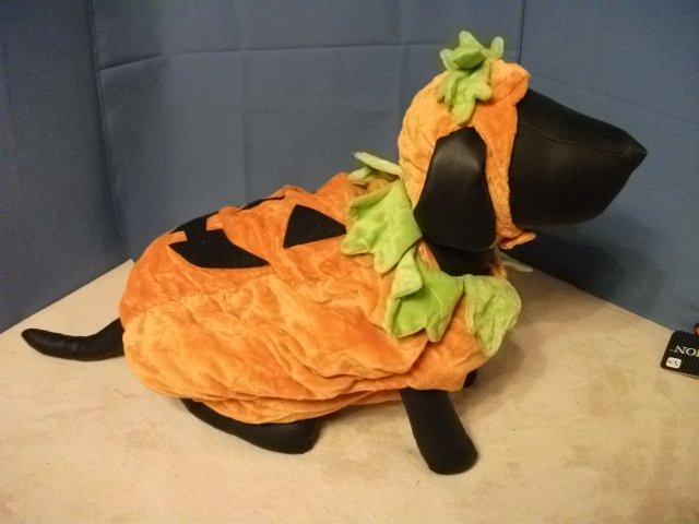 Pet Costume: Pumpkin for Dog - Size L