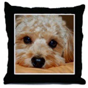Custom Photo Pillow Cover