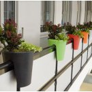 Colourful Planters