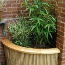 Bamboo Corner Planter