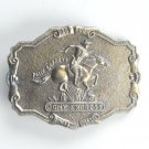 Vintage Pony Express Western Belt Buckle