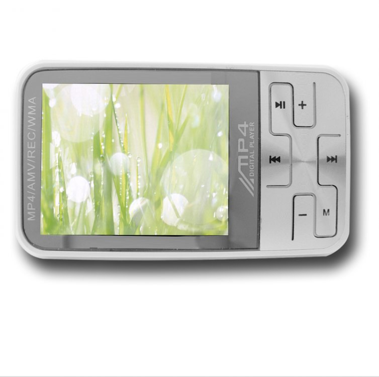 eeelectronics 2-Inch TFT Screen 1GB MP3/MP4 Player