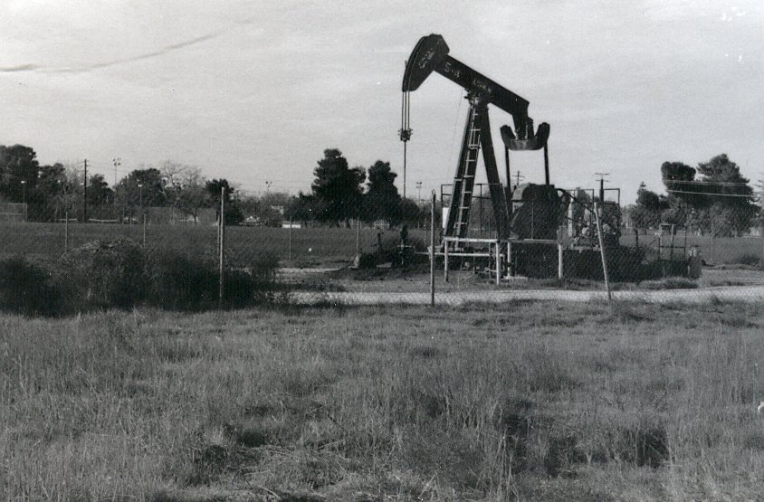 Rosedale Oil Pump (3)