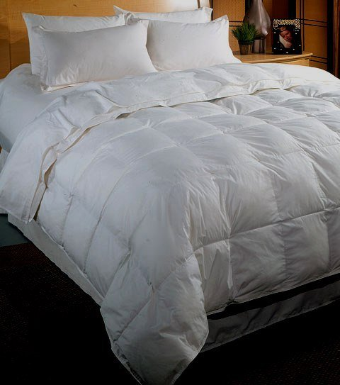 Luxurious 500TC Queen/Full Solid White Goose Down Comforter 50oz