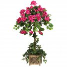 Bougainvillea Topiary w/Wood Box