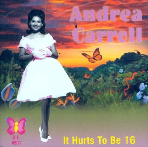 Andrea Carroll-It Hurts To Be 16