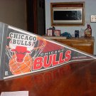 Chicago Bulls Eastern Conference Pennent