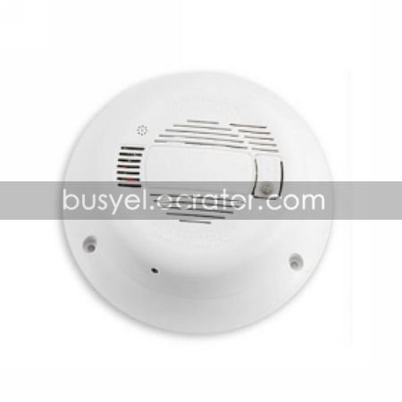 Wall Surveillance Camera with Sony CCD Lens + Night Vision