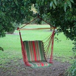 Pawleys Island Cushioned Single Hammock Swing - Trellis Garden