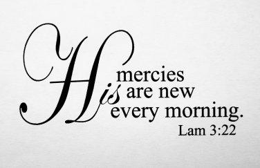 Lamentations 3:22