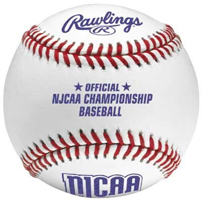 Rawlings R100NJCAA College Baseballs
