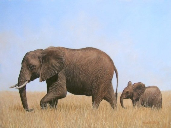 AFRICAN ELEPHANTS New DAVID STRIBBLING Ltd Ed Print.