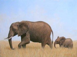 AFRICAN ELEPHANTS New DAVID STRIBBLING Ltd Ed Print.