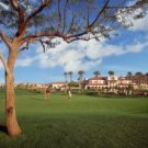 Legacy Golf Resort March Spring Training 1BR Condo