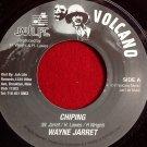 Wayne Jarrett - Chip In / Roots Radics - Version (1982)