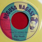 Big Youth - What's Going On / Wake Up Everybody COLORED VINYL (1976)