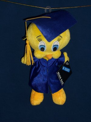Graduation Tweety Bean Bag from WB Studio Store FREE SHIPPING